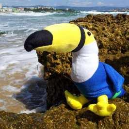 Unagi Travel sets up holidays for stuffed animals