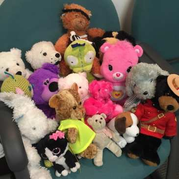 Lost Teddy Bears at a Hospital Look For Owners
