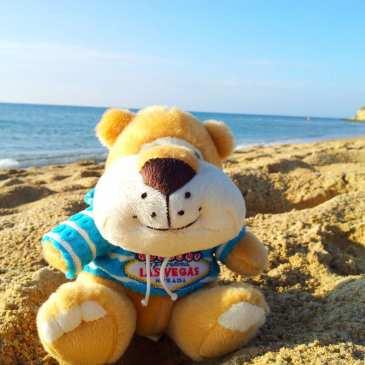 Five cool stuffed animals DIY videos