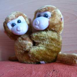 Today is the Plush Animal Lover's Day