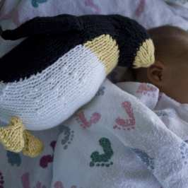 Can a baby sleep with stuffed animals in the crib