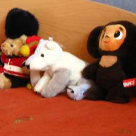 10 signs you love stuffed animals