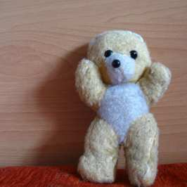Teddy Stuffed Bear