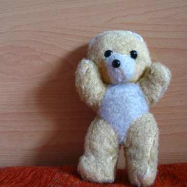 Meet Teddy the stuffed bear