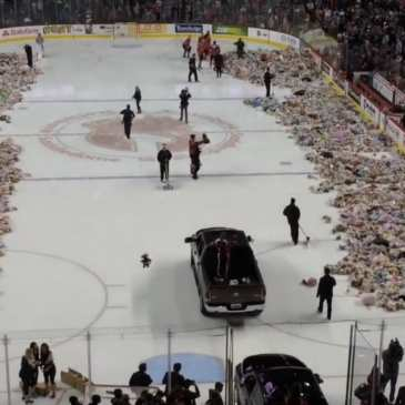 Watch fans throw 25 214 stuffed animals on the ice of a hockey game