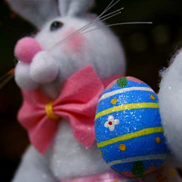 Stuffed animals still among the top gifts and participants on Easter