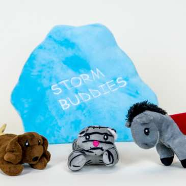Storm Buddies protect your children during a storm
