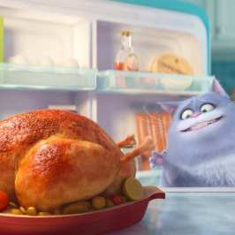 """The Secret Life of Pets"" Trailer is out to show you what your cat does all day"