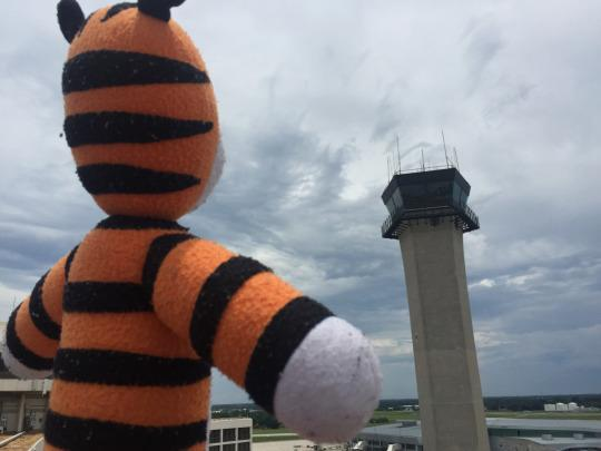 A lost stuffed tiger had an epic adventure at the Tampa International Airport