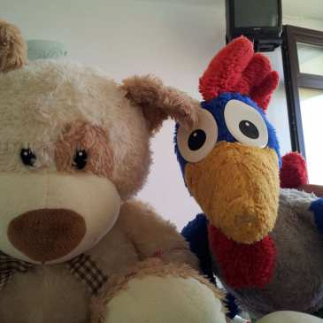 Stuffies for Seniors needs help to keep the project going