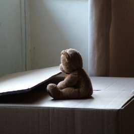 Project Teddy Bear donates nearly 19 000 stuffed animals to children