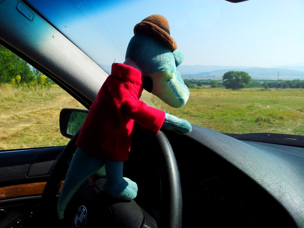 Check out our plush Crocodile Gena going for a drive (video)