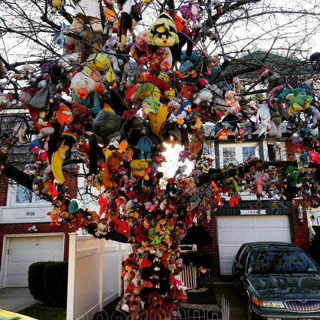 The story of the tree with stuffed animals in Brooklyn