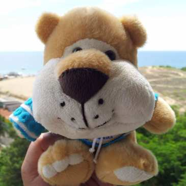 Researchers discover why people like to hug cute things like stuffed animals