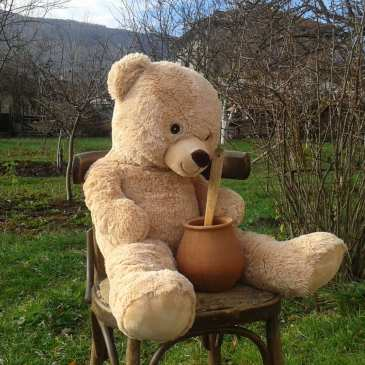 Ex-couple shares custody of a teddy bear