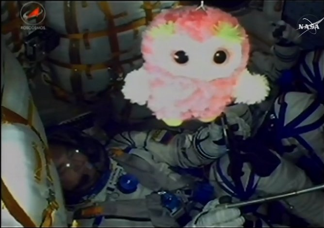 A stuffed animal flew to space to live on the International Space Station