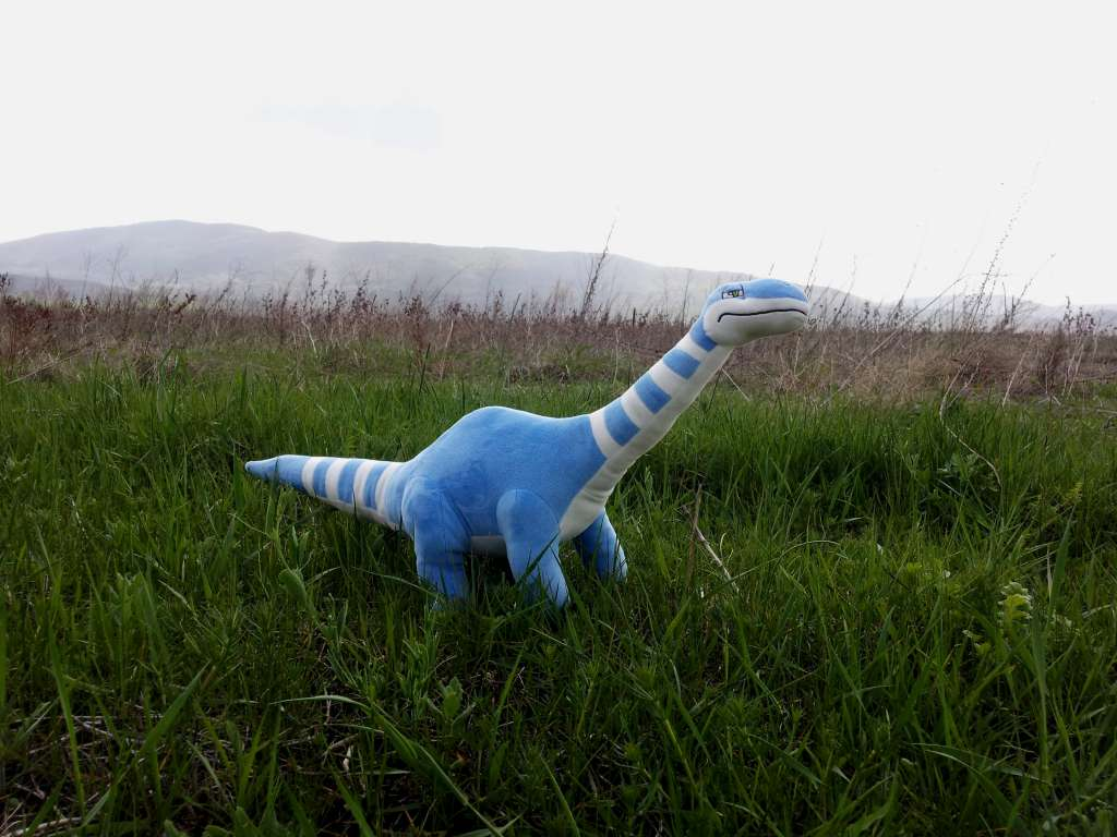 Check out the Jungle Plush Apatosaurus stuffed animal review
