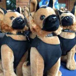 K9 stuffed animals help raise $20 000 for their real counterparts in Redlands