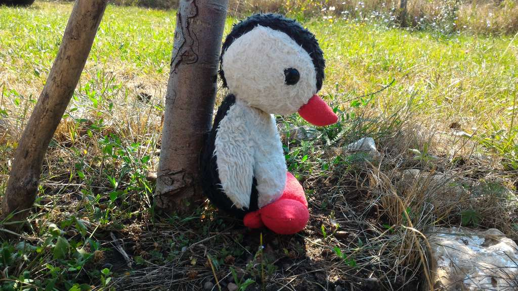 Finished and repaired stuffed penguin