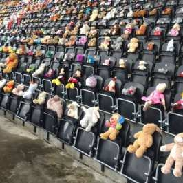Teenager filled a stadium with 10 500 teddy bears in honor of a friend