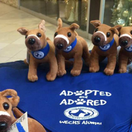 Humane Society starts selling a plush Justice dog for charity