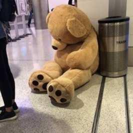 TSA won't allow giant stuffed animals as carry-ons on flights