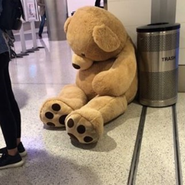 TSA won't allow giant stuffed animals as carry-ons on flights