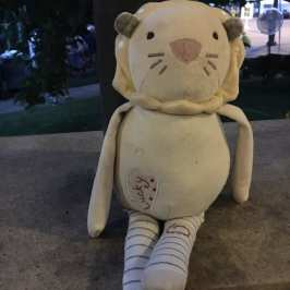 The police in Colorado helped a lost stuffed animal find its owner