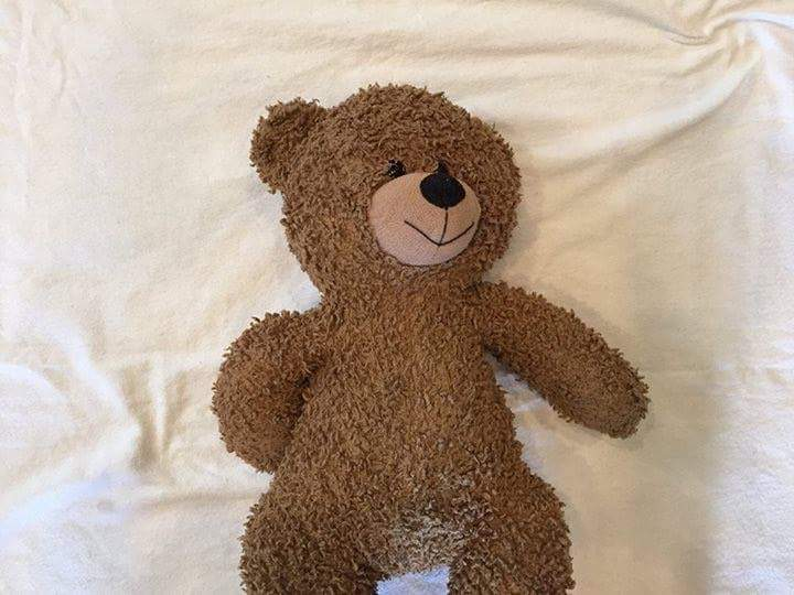 4-year-old boy from Dallas was reunited with his lost Teddy Bear