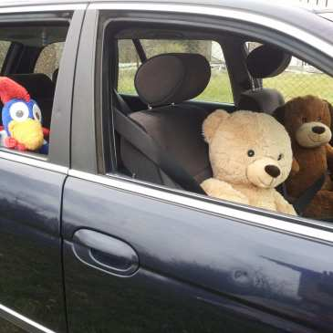How to make the best of a road trip with stuffed animals