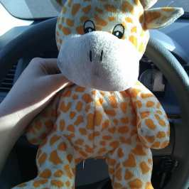 This plush giraffe is looking for its owner after getting lost in Polk County