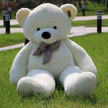 The Isle of Wight will hold a big teddy bear picnic this weekend