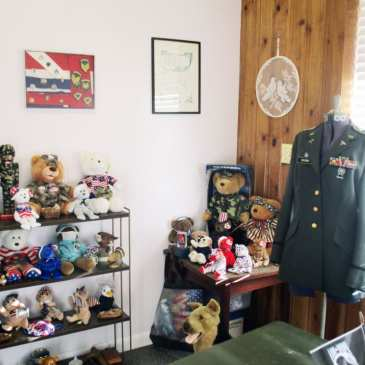 Two women open a teddy bear museum to help save cats