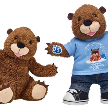 People still waiting in lines at Build-A-Bear Workshops despite the promotion not being active