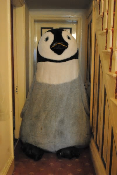 This 6-foot tall stuffed penguin is searching for a new home