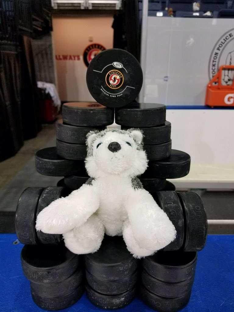The Stockton Heat aim to break its teddy bear toss record of over 10 000 donated stuffed animals