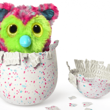CPLG secures multiple licenses for Hatchimals stuff in the UK