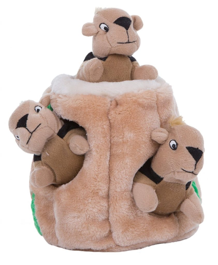 Outward Hound Hide-A-Squirrel and Puzzle Plush Squeaking Toys Is Quite the Game for Dogs