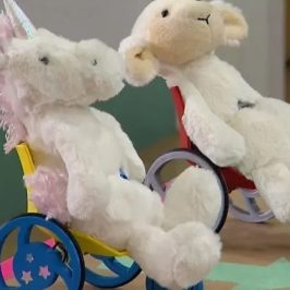 Toy Like Me is creating new toys with wheelchairs to inspire