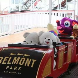 Stuffed animals took a ride on a roller coaster in Belmont Park